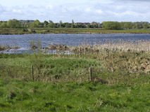 Doxey Marshes Royalty Free Stock Image