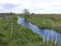 Doxey Marshes Stock Photography