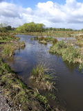 Doxey Marshes Stock Image