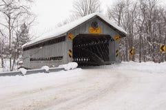 Doyle Road Bridge Winter Stock Afbeelding