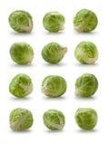 Doze couves de Bruxelas Fotografia de Stock Royalty Free