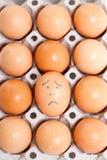 Doze ovos em um pacote Imagens de Stock