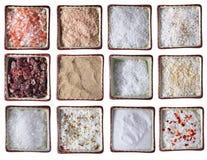 Doze tipos de sal do mar em umas bacias quadradas Fotografia de Stock Royalty Free