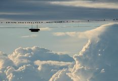 Dozen birds on a light wire with clouds stock photography