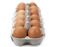 Dozen brown eggs. Dozen eggs isolated on a white background stock images