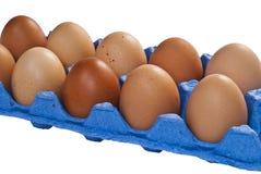 A dozen chicken eggs. Royalty Free Stock Image