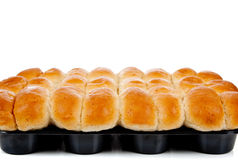 A dozen cooked rolls in a pan on white Royalty Free Stock Photography