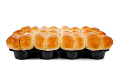 A dozen cooked rolls in a pan on white Royalty Free Stock Photos