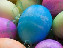 A Dozen Easter Eggs Stock Photos