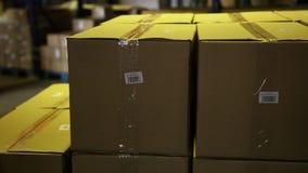 Dozen in een pakhuis stock footage