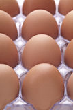Dozen Eggs Royalty Free Stock Images