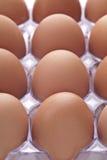 Dozen Eggs Royalty Free Stock Images
