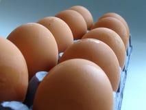 Dozen of eggs. A dozen of eggs on blue background Stock Image