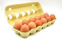 Dozen of eggs stock photography