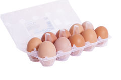 Tray of Eggs. A dozen eggs in a tray with a white background Stock Photos