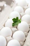 A dozen fresh, free range, organic white eggs in container with Royalty Free Stock Images