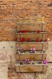 Dozen met tuinbloemen Stock Afbeelding