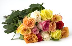 Dozen mixed long stemed roses. Bouquet of a dozen long stemmed mixed roses, the signifies love, beauty, compassion, affection, caring, giving. Fresh looking stock photography