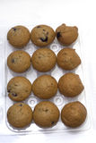 Dozen muffins in plastic container. A dozen plain blueberry mini muffins in a clear plastic form container Royalty Free Stock Images