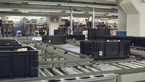Dozen op een transportband in een groot geautomatiseerd pakhuis stock videobeelden