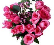 A dozen pink roses Royalty Free Stock Photo
