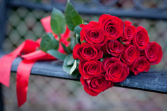 Dozen red roses on a bench. Close up of a dozen red roses with red ribbon, lying on a bench Royalty Free Stock Images