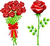 Dozen of roses Stock Image