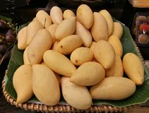 Dozen of sweet mango in the basket in supermarket, pile of  sweet mango on banana leaf in fresh market, in restaurant with blur ba Royalty Free Stock Photos