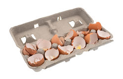 Dozen used egg shells in a cardboard container Royalty Free Stock Image
