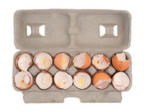 Dozen used egg shells in a cardboard container Stock Photography
