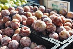 Dozen van Honey Punch Pluots bij een Tribune in de Landbouwersmarkt stock afbeelding