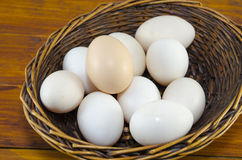 Dozen of white eggs in a wooden basket Stock Photography