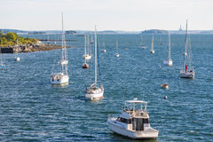 Dozen White Sailboats on Blue Water Stock Image