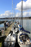 Dozen yachts in line moored at a sea ridge. View of a dozen yachts moored at a sea ridge Royalty Free Stock Photo
