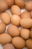 Dozens of eggs in a carton. Novi Sad, Serbia Royalty Free Stock Photography