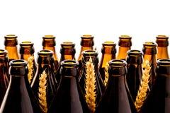 Dozens of empty, brown German beer bottles Royalty Free Stock Image