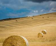 Dozens of hay bales on fields in Tuscan with cloudy sky. Dozens of hay bales on fields in Tuscan with cloudy, summer sky royalty free stock photos