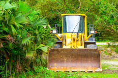 Dozer In Amazonia Royalty Free Stock Photography