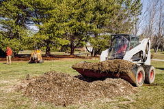 Dozer removing debris from Stump removal. Professional landscapers remove by dozer large pile of woodchips and debrsi after grinding tree's large stump out Stock Image