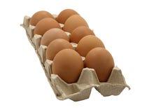Dozijn eieren. stock fotografie