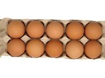 Dozijn eieren. Stock Foto's