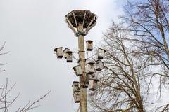 Dozijn vogelhuizen op de pijler stock afbeeldingen