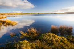 Dozmary basen Cornwall Anglia fotografia royalty free