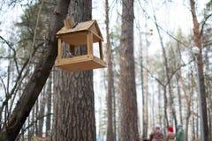 Dozowniki dla ptaków zdjęcia royalty free