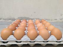 Dozzina dell'uovo del pollo per la cottura della prima colazione nel vassoio di stoccaggio dell'uovo con il fondo della sfuocatur Immagine Stock Libera da Diritti