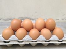 Dozzina dell'uovo del pollo per la cottura della prima colazione nel vassoio di stoccaggio dell'uovo, fila 2 dell'uovo, uovo di P Fotografie Stock