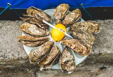 Dozzina delle ostriche con il limone fotografie stock libere da diritti