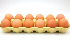 Dozzina uova Immagini Stock Libere da Diritti
