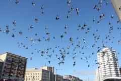 Dozzine di uccelli di volo in cielo blu fotografie stock libere da diritti