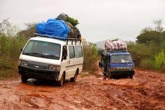 Déplacement par la jungle du Madagascar Photo libre de droits